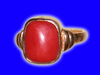 ring coral, coral rings, coral ring, coral astrology, cheap coral ring and pendants, coral gem ring, coral ring mantra, coral mantra, moonga ring, moonga rings, astrological moonga ring, astro moonga ring, mantra healed coral ring, energised coral ring, mangal dev ring, mangal mantra rings, aries and scorpio rashi rings, ring for aries and scorpio rashi, aries and scorpio rasi ring, mesha and vraschick rasi ring, astrological coral ring for mars, coral gem stone, gem stone coral rings, coral pendants, semi precious gemstones, precious coral gem, coral bracelet, navratan rings, navratan pendants, ratans, mars planet rings, hindu temple, mandir, astrologers in india, free horoscope reading, free birth charts, free janam patries, malefic mars in horoscope, mars astrologer rajneesh rishi, gurudev, guruji